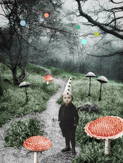 Soppskog av Katrine Kalleklev